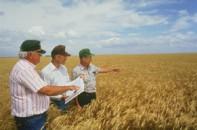 Meeting in field